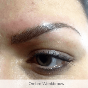 Zevenaar Permanente Make-Up Specialist Desiree Huidverbetering